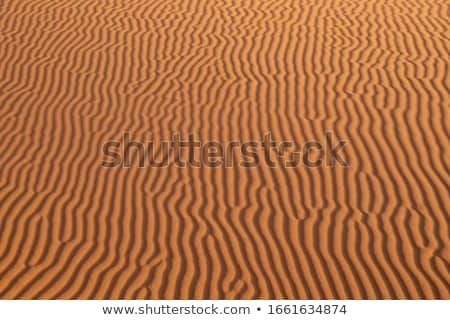 sand dune texture background Stock photo © goce