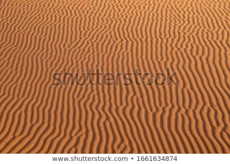 sand dune texture background stock photo © goce