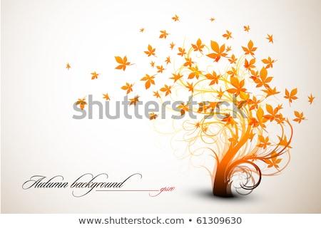 植物 抽象的な デザイン 秋 ストックフォト © robuart
