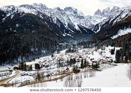зима · альпийский · декораций · высокий · гор · деревья - Сток-фото © frimufilms