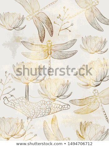Lotus and dragonfly pattern Vector line art. Golden texture shiny decors Stock photo © frimufilms