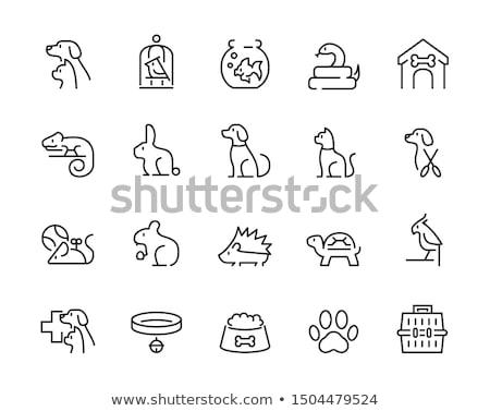 Jaula hámster icono vector ilustración Foto stock © pikepicture
