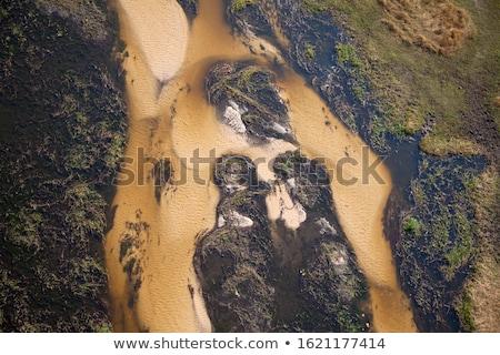 デルタ ボツワナ 水 自然 美 旅行 ストックフォト © ribeiroantonio