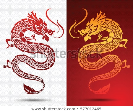 Chinese draak vector silhouet illustratie oude oranje Stockfoto © cienpies