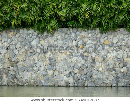stone wall and pond detail Stock photo © prill