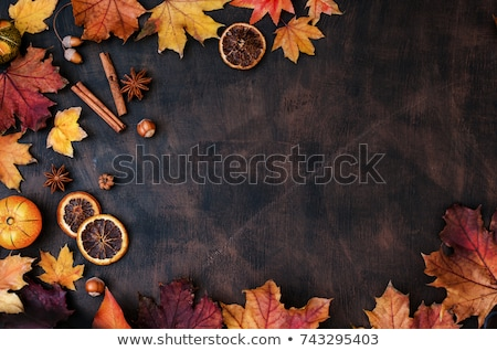 Thanksgiving background Stock photo © marinini