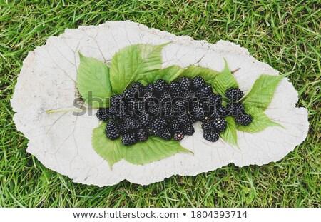 чаши · изюм · виноград · Sweet · органический - Сток-фото © yura_fx