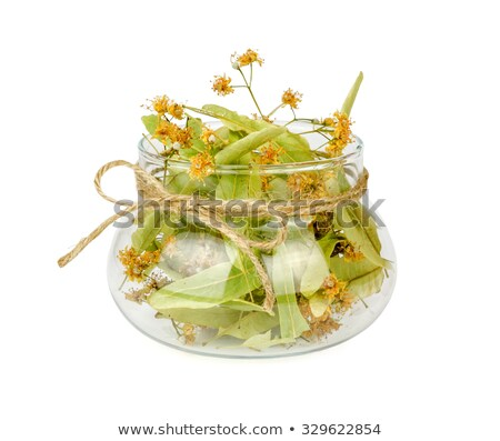 linden tea in the transparent cup and dry linden flowers stock photo © yelenayemchuk