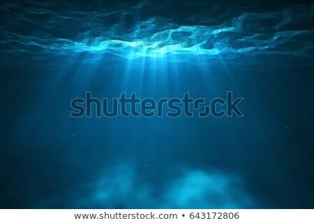 Undersea light Stock photo © Tawng