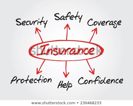 Insurance Flow Chart Marker Stock photo © ivelin