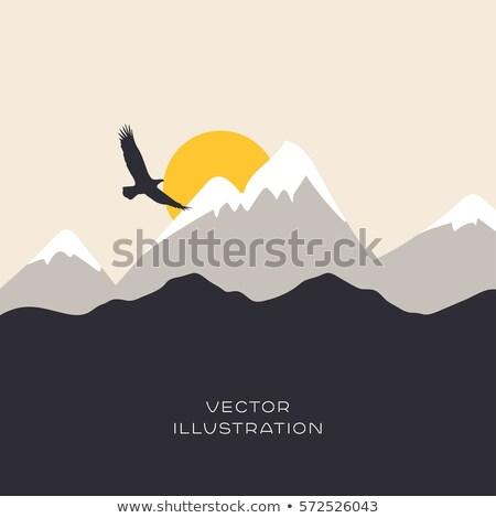 Águia colina árvore céu sol pôr do sol Foto stock © mariephoto