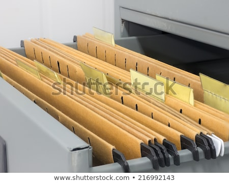 Folders in Archive Drawer. Stock photo © tashatuvango