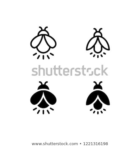 Vecteur icône luciole lumière Photo stock © zzve