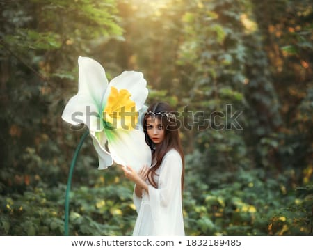 woman in a green dress with diadem Stock photo © stepstock