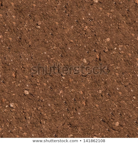 Seamless Texture of Brown Soil. Stock photo © tashatuvango