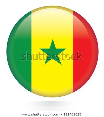 Przycisk Senegal Pokaż banderą star tropikalnych Zdjęcia stock © Ustofre9