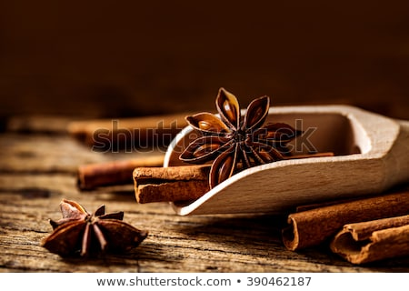 fűszer · ánizs · fahéj · szegfűszeg · fából · készült · tálak - stock fotó © mady70