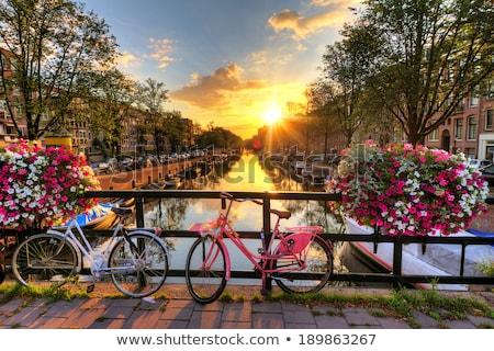 Bicikli Amszterdam csatorna rózsaszín zárolt korlát Stock fotó © searagen