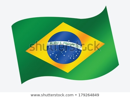 Бразилия · флаг · дизайна · вектора · Гранж · стиль - Сток-фото © kiddaikiddee