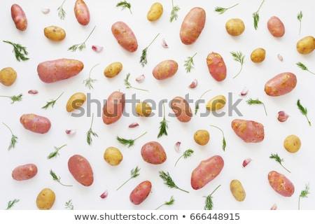 Jovem cebola isolado branco comida fundo Foto stock © natika