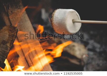 Toasting by the Fire Stock photo © songbird