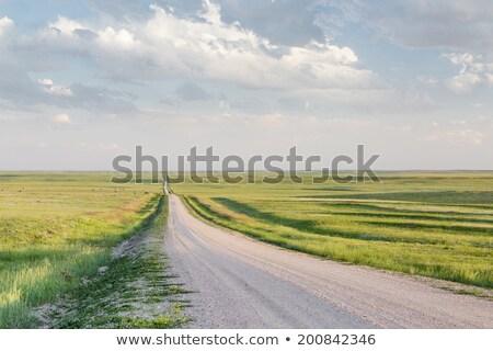 Estrada de terra oriental Colorado pradaria típico Foto stock © PixelsAway