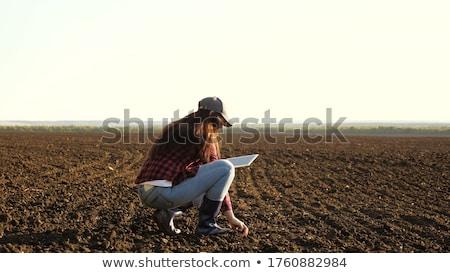 usine · mains · agricole · travailleur · vert - photo stock © stevanovicigor