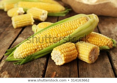 fül · kukorica · izolált · fehér · zöldség · gabona - stock fotó © masha