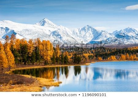 Snow Covered Mountain Range Stock photo © AndreyPopov