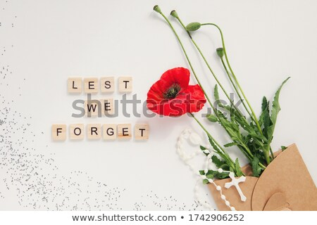 Poppy Cross Stock photo © Bigalbaloo
