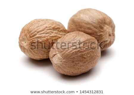 Suszy gałka muszkatołowa nasion brązowy nasion drzewo Zdjęcia stock © tang90246