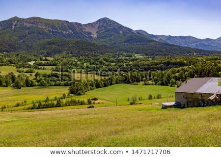 view from citadel Vauban in  Seyne les Alpes  stock photo © meinzahn