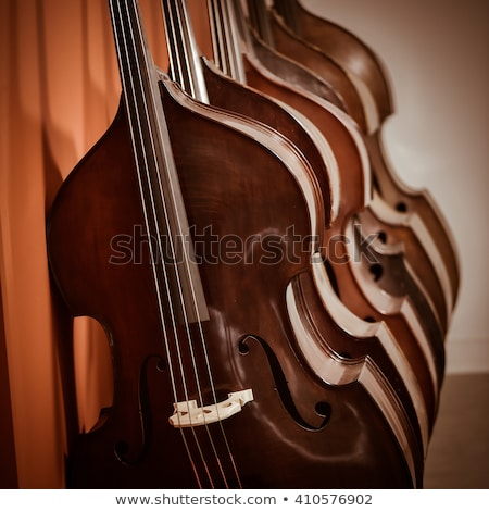 group of cellos in the workshop violin maker stock photo © freeprod