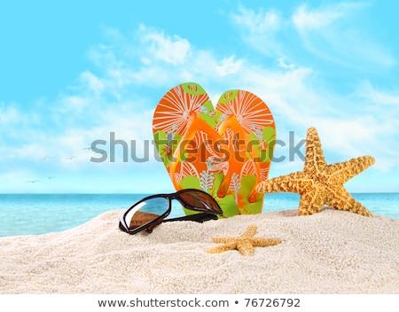 Pár tanga papucs tengerparti homok úszik szemüveg Stock fotó © stevanovicigor