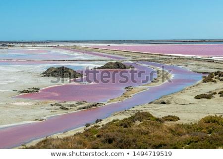 Salt evaporation ponds Stock photo © Digifoodstock