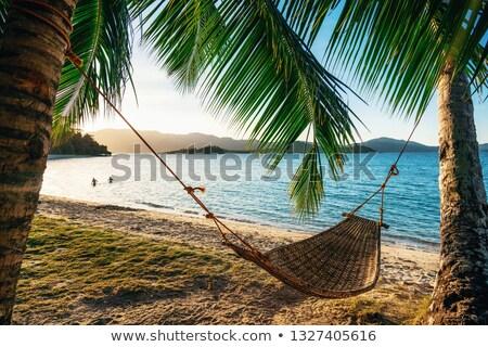 Hangmat palmbomen zonsondergang illustratie silhouet vakantie Stockfoto © adrenalina