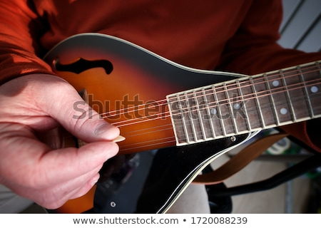 Mandoline Stock photo © user_9834712