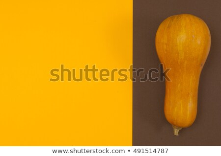 Butternut squash isolated on brown and orange split background Stock photo © szabiphotography
