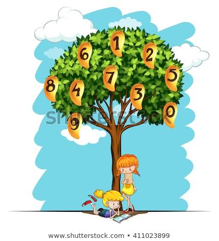 Numbers on mango tree Stock photo © bluering