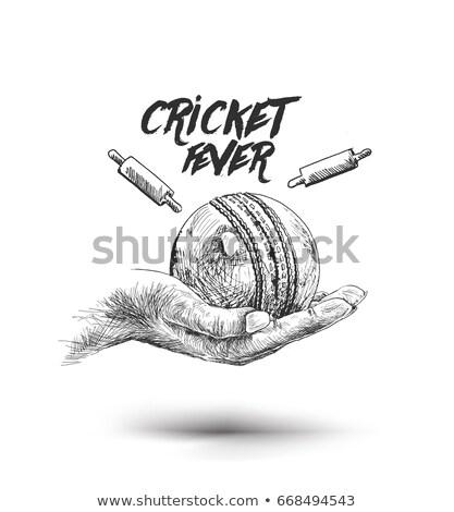 Stockfoto: Cricket · schets · icon · vector · geïsoleerd