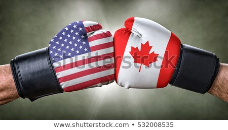 a boxing match between the usa and canada stock photo © zerbor