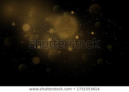 Goud christmas eps 10 sneeuwvlokken illustratie Stockfoto © beholdereye