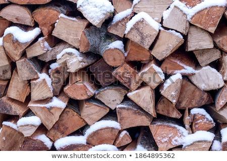 Pile of wood logs under snow Stock photo © stevanovicigor