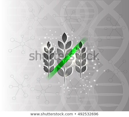 Gluten free abstract scientific DNA background Stock photo © Tefi