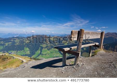 альпийский деревне Австрия долины цветок зеленый Сток-фото © CaptureLight