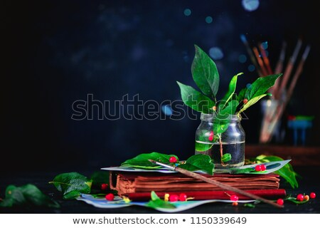 Garden tools on a dark background - Green thumb Stock photo © Zerbor