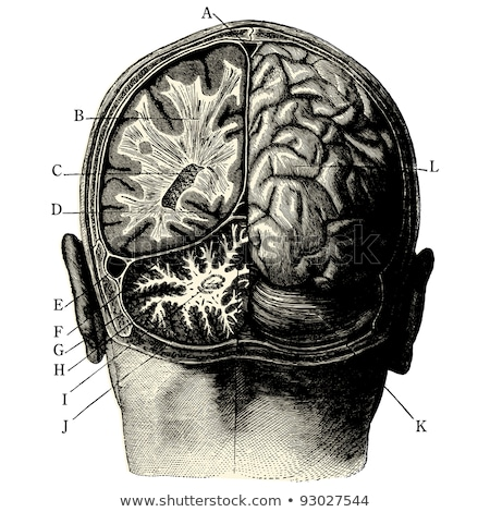 man with injured head vector illustration stock photo © rastudio