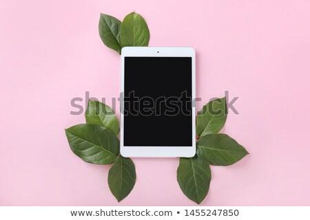 natuurlijke · medische · pil · groene · bladeren · illustratie · Blauw - stockfoto © barbaliss