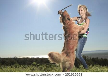 Boldog fiatal lány nevet kutya fiatal arany Stock fotó © ozgur