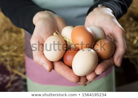 Сток-фото: свежие · фермы · яйца · домой · рынке